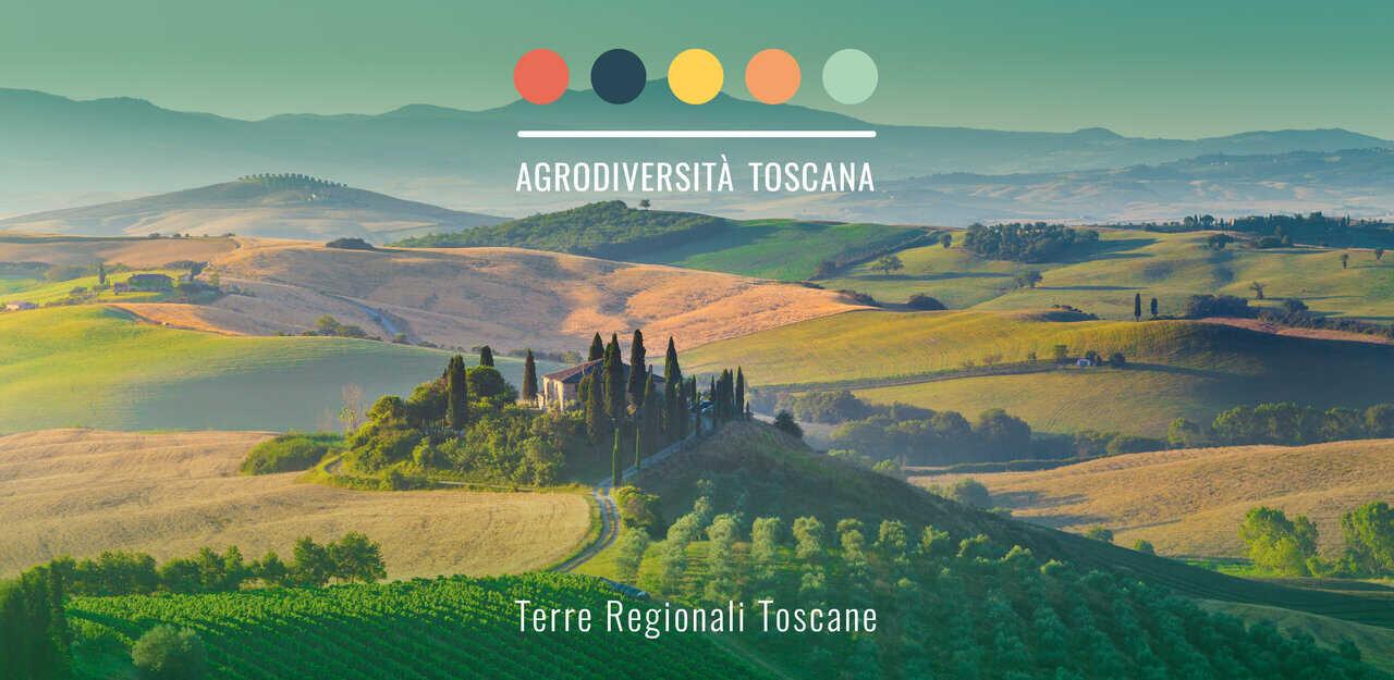 Agrodiversità Toscana: un'app dedicata alle varietà dell'agricoltura toscana